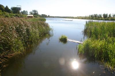 Грибинское озеро